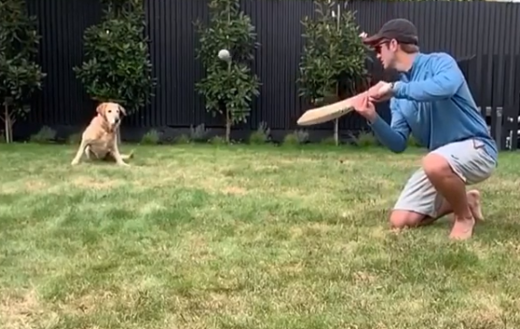 Kane Williamson playing with his pet