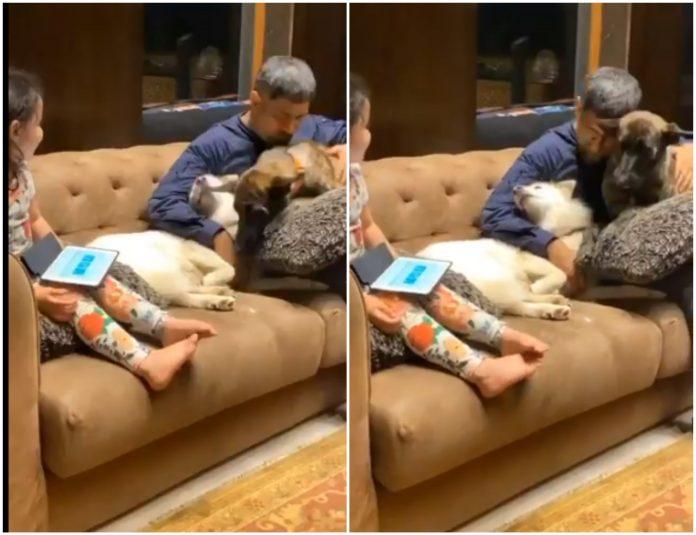 Dhoni cuddling his pet video