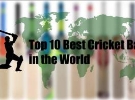 Top 10 Best professional cricket bats