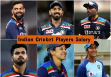 indian cricket players salary